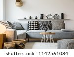 patterned pillows on grey couch ... | Shutterstock . vector #1142561084