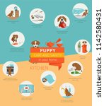 puppy care and safety in your... | Shutterstock .eps vector #1142580431