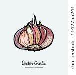 vegetable garlic head. hipster...   Shutterstock .eps vector #1142755241