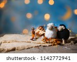 eid al adha   festival of... | Shutterstock . vector #1142772941