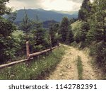 karpaty is picturesque place... | Shutterstock . vector #1142782391