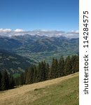 Small photo of Meadow, Forest And Village Named Saanen