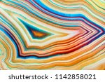 amazing detailed and colorful... | Shutterstock . vector #1142858021