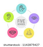 icon set of five human senses... | Shutterstock .eps vector #1142875427