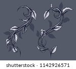 graphic detailed black and... | Shutterstock .eps vector #1142926571