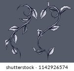 graphic detailed black and... | Shutterstock .eps vector #1142926574