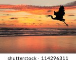 Blue Heron Silhouette At...