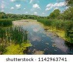 The pond at Lake Kegonsa State Park in Stoughton Wisconsin