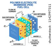 fuel cell diagram. vector.... | Shutterstock .eps vector #1142997311