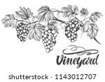 grape vine  grape  calligraphy... | Shutterstock .eps vector #1143012707