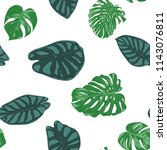 seamless hand drawn botanical... | Shutterstock .eps vector #1143076811