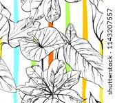 tropical  modern stripes motif. ... | Shutterstock .eps vector #1143207557