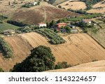 panoramic view of olive groves... | Shutterstock . vector #1143224657