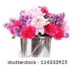 Beautiful Spring Flowers In...