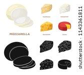 parmesan  roquefort  maasdam ...   Shutterstock .eps vector #1143361811