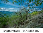 dry tree on a stony slope | Shutterstock . vector #1143385187