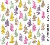 fern frond herbs  tropical... | Shutterstock .eps vector #1143459317