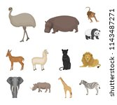 different animals cartoon icons ...   Shutterstock . vector #1143487271