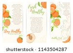 illustration of peach or... | Shutterstock .eps vector #1143504287