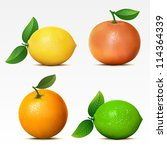 collection of fruits on white... | Shutterstock .eps vector #114364339
