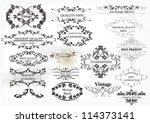 calligraphic vector | Shutterstock .eps vector #114373141