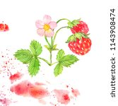 red strawberry with flower and... | Shutterstock . vector #1143908474