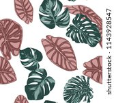 tropical jungle leaves. vector... | Shutterstock .eps vector #1143928547