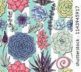 vector succulents seamless... | Shutterstock .eps vector #1143945917