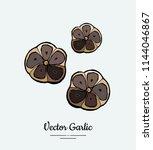 vegetable garlic black cloves... | Shutterstock .eps vector #1144046867