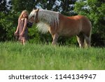 michurinsk  russia  may 24 ... | Shutterstock . vector #1144134947
