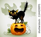 scared black cat on a pumpkin ... | Shutterstock .eps vector #114420091