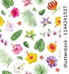 tropical seamless pattern with... | Shutterstock .eps vector #1144241537