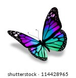 Butterfly  Isolated On White...