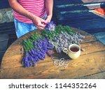 hands of gardener woman create... | Shutterstock . vector #1144352264