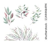 watercolor leaves collection.... | Shutterstock . vector #1144446494