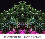 nature hd wallpapers | Shutterstock . vector #1144447604