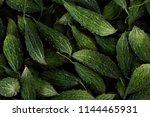 heap of green fresh organic... | Shutterstock . vector #1144465931