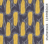 maize drawing on grey. corn... | Shutterstock .eps vector #1144482614