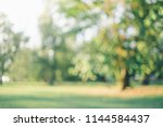 blur nature green park with... | Shutterstock . vector #1144584437