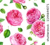 summer flowers roses and green... | Shutterstock . vector #1144644071