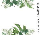 vector designer elements set... | Shutterstock .eps vector #1144724591