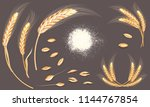 set of wheat ears  grains and... | Shutterstock . vector #1144767854