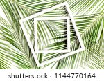 white frame and tropical palm... | Shutterstock . vector #1144770164