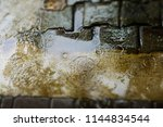 close up rainy puddle with... | Shutterstock . vector #1144834544