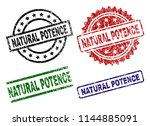 natural potence seal prints... | Shutterstock .eps vector #1144885091