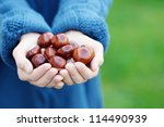Little Hands With Chestnuts  ...