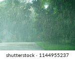 Heavy Rain And Green Tree In...