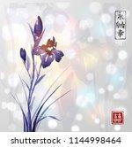 iris flower hand drawn with ink ...   Shutterstock .eps vector #1144998464