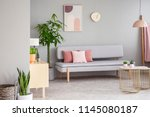 real photo of grey living room... | Shutterstock . vector #1145080187