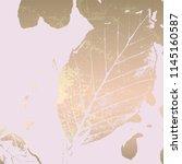 autumn foliage rose gold blush... | Shutterstock .eps vector #1145160587